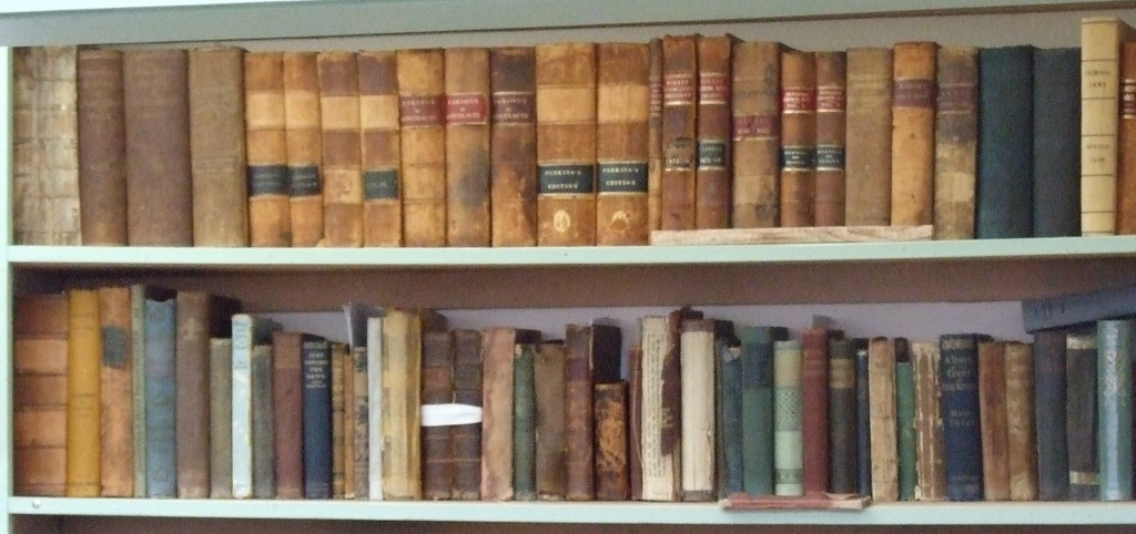Books and ledgers line the sehlves of the Chestico Archives